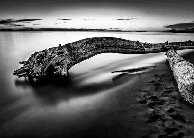 Ioan Beach Log